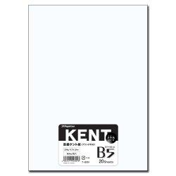 画像1: ナ-B301 マルチケント紙 B5 20枚パック
