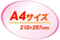 A4サイズ